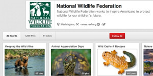 National Wildlife Foundation
