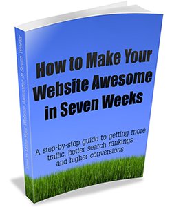 How to Make Your Website Awesome in Seven Weeks by John Haydon